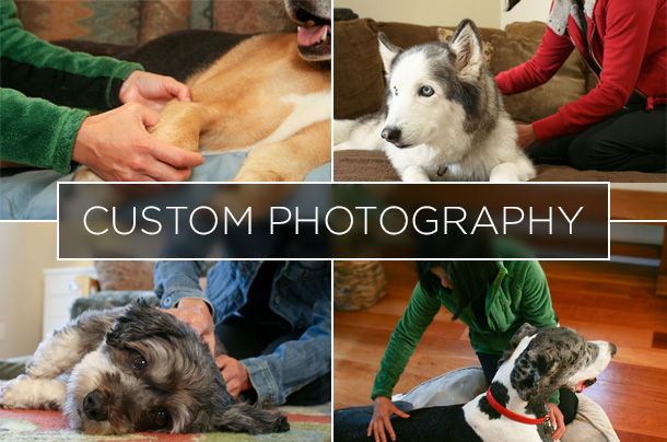 HandZenPawz Custom Photography