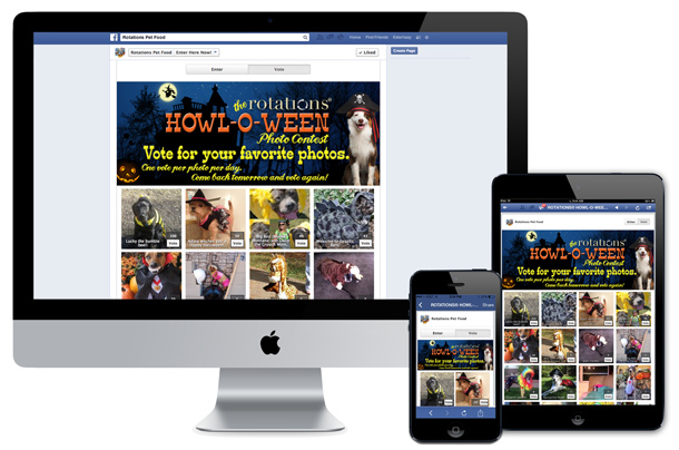 rotations-pet-food-facebook-app-all-stages-marketing-portfolio
