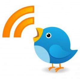 All Stages Marketing Twitter bird tweeting advice